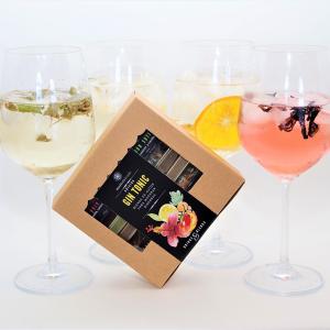 Blend Gin Tonic, gin tonic pina, gin tonic mango naranja, gin tonic rojo passion, gin tonic limon sutil