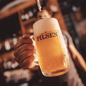 Cervepar - Pilsen Producida